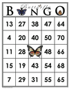 Butterfly<br>Bingo Cards<br><b>digital download</b>