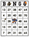 Football<br>Bingo Cards<br><b>shipped to you</b>