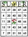 35 SUMMER Bingo Cards