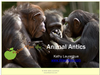 Animal Antics<br><b>digital download</b>