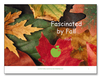 Fascinated by Fall<br><b>digital download</b>